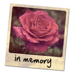 CHF_In_Memory_Pink_Rose